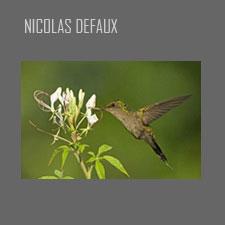Nicolas Defaux