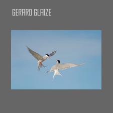 Gérard Glaize